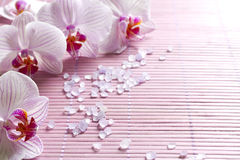 Pink orchids and spa aromatherapy abstract still life Stock Photo