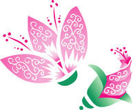 Pink Oriental Flower with Bud. Beautiful pink oriental type flower with flower bud vector illustration