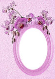Pink oval frame with orchid Stock Photo