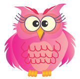Pink Owl Stock Photos