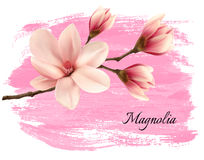 Pink paint magnolia branch banner. Stock Image