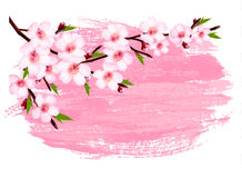 Pink paint sakura branch banner. Royalty Free Stock Photography