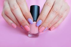 Pink Painted Nails. Beautiful Pink Nail Manicure with Pink Bottle in Woman is Hand on Pink Background. Great for Any Use stock images