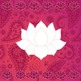 Pink paisley and lotus background Stock Images