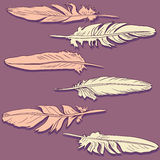 Pink and pale yellow feathers Stock Photography