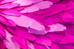 Pink paper background Stock Images