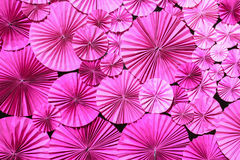 Pink paper flower Stock Photography