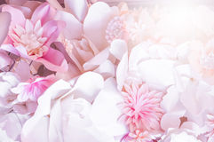 Pink paper flowers. Decorative background from pink paper flowers Stock Photos