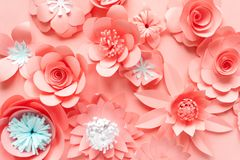 Pink paper flowers on the pink background royalty free stock images