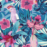 Pink parrot flowers and plants blue background Royalty Free Stock Images