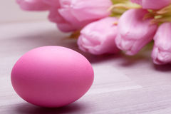 pink pastel easter egg with tulip flower Royalty Free Stock Photo