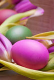 pink pastel easter egg with tulip flower Stock Image