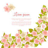 Pink pastel vintage flowers around white background for wedding invitation, marriage card, congratulation banner, advertise. Stock Photos