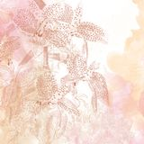 Pink and peach floral background stock illustration