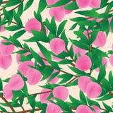 Pink peach fruit branch seamless pattern Stock Image