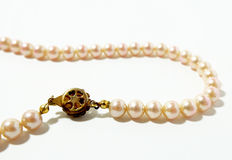 Pink pearl. On white background Stock Photos