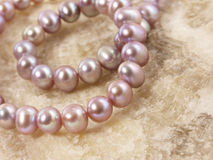 Pink pearls on a stone Stock Images