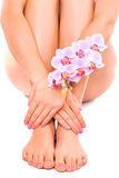 Pink pedicure and manicure with orchid flower Stock Images