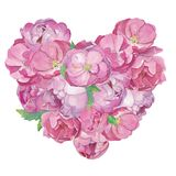 Pink peones flowers and roses composition in shape of heart royalty free illustration