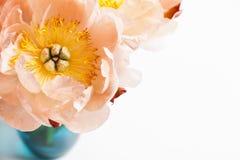 Pink peonies in blue vase Royalty Free Stock Image