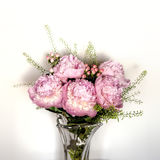Pink peonies bunch Royalty Free Stock Photography