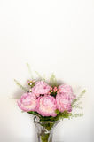 Pink peonies bunch Royalty Free Stock Images
