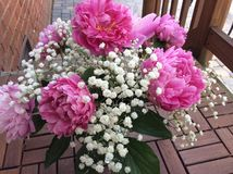 Pink peonies in entrance hall Stock Photography