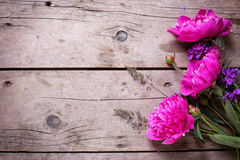 Pink peonies flowers on aged wooden background. Royalty Free Stock Photos