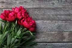 Pink peonies flowers on rustic wooden background. Place for text, top view. greeting card Royalty Free Stock Photos
