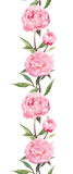 Pink peonies flowers. Seamless floral border frame. Watercolor Royalty Free Stock Images