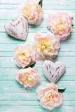Pink peonies flowers and  two decorative hearts on  turquoise  w Stock Image