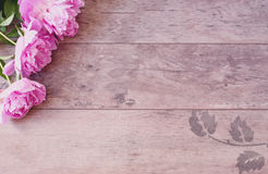 Pink Peonies Flowers on a Wooden Background. Styled Marketing Photography. Styled Stock Photography. Blog Header Image Royalty Free Stock Image