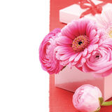 Pink peonies and gerber flower Royalty Free Stock Photo
