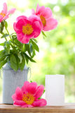 Pink peonies in metal vase and empty card for letter Royalty Free Stock Photos