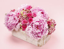 Pink peonies and roses in wooden box. Stock Image