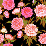 Pink peonies seamless рattern. Stock Image