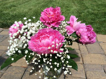 Pink peonies in a vase outside Royalty Free Stock Image