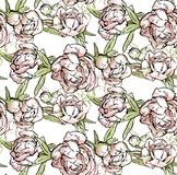 Pink peonies. Vector illustration stock illustration