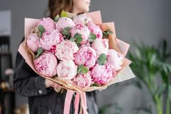 Pink peonies in womans hands. Beautiful peony flower for catalog or online store. Floral shop concept . Beautiful fresh royalty free stock image