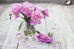 Pink peonies on wooden background Stock Images