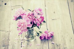 Pink peonies on wooden background - vintage photo Royalty Free Stock Images