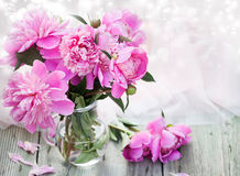 Pink peonies on wooden background - vintage photo Stock Photos