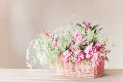 Pink peony in basket Stock Images