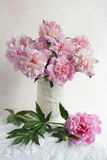 Pink peony bouquet. Beautiful pink peony bouquet in white Royalty Free Stock Photo