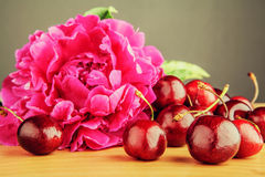 Pink peony with cherries. Retro style Stock Photography