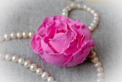 Pink Peony Clay Stock Image