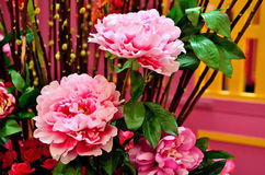 Pink Peony. Decorating for Chinese New year royalty free stock image