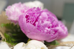 Pink peony flower bouquet close up Stock Photo