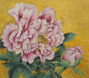 Pink peony flower on a gold background Stock Image