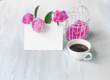 Pink peony flower. Royalty Free Stock Images